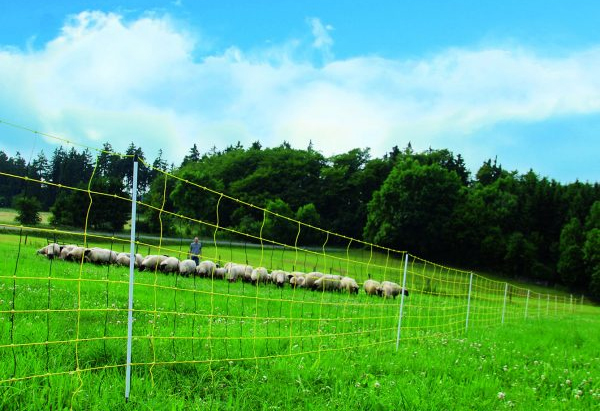 electric fence guide